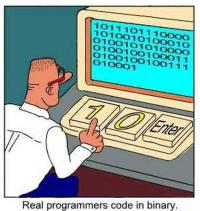 How real programmers code