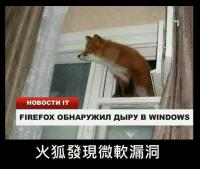 Firefox finds a bug on Windows